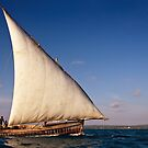 Sailing Dhow by Scott Carr