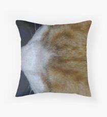 Cuddles - close up Throw Pillow