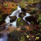 Boulder Brook by Alex Burke