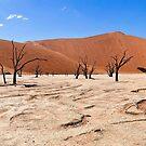Desolation by Scott Carr