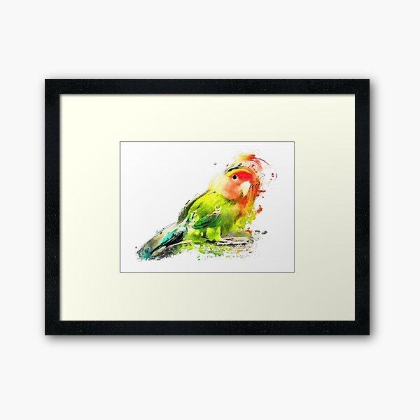 Lovebird Framed Art Print