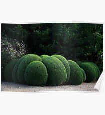 Spherical Topiary Poster