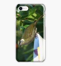 Lewin's Honeyeater iPhone Case/Skin