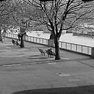 Thames Embankment  walkway. by Streetpages