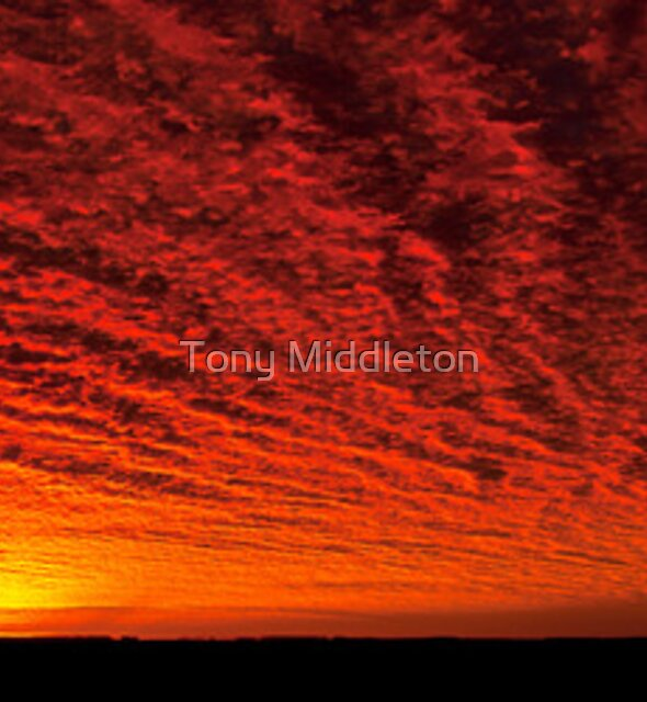 Blazing skies by Tony Middleton