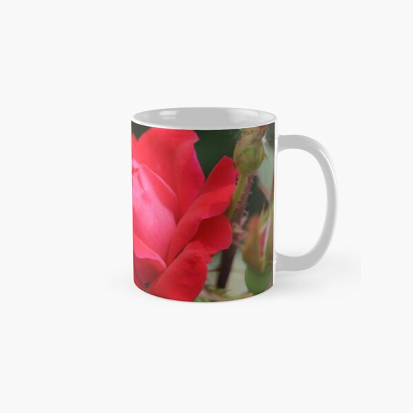 Rose on a Thorn Bush Classic Mug