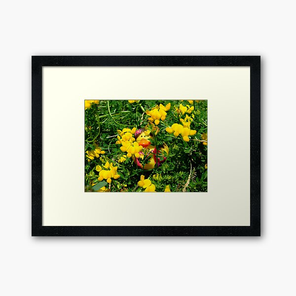 HC Series: In the Yellow Framed Art Print