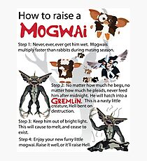 How to Raise a Mogwai Photographic Print