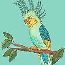 Fanciful Cockatoo by Kayleigh Walmsley