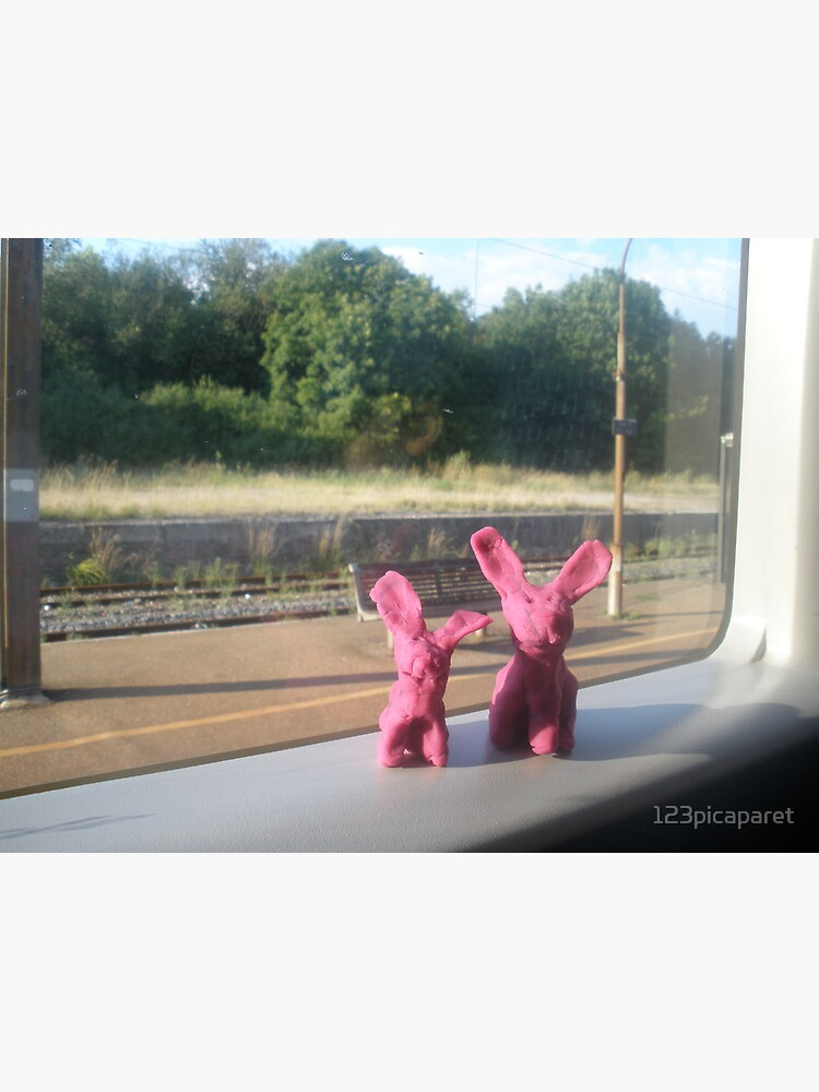 Rabbits on a train by 123picaparet
