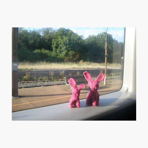 Rabbits on a train Photographic Print