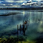 The old jetty by larry flewers