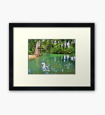 Clement's Wash Hole Framed Print