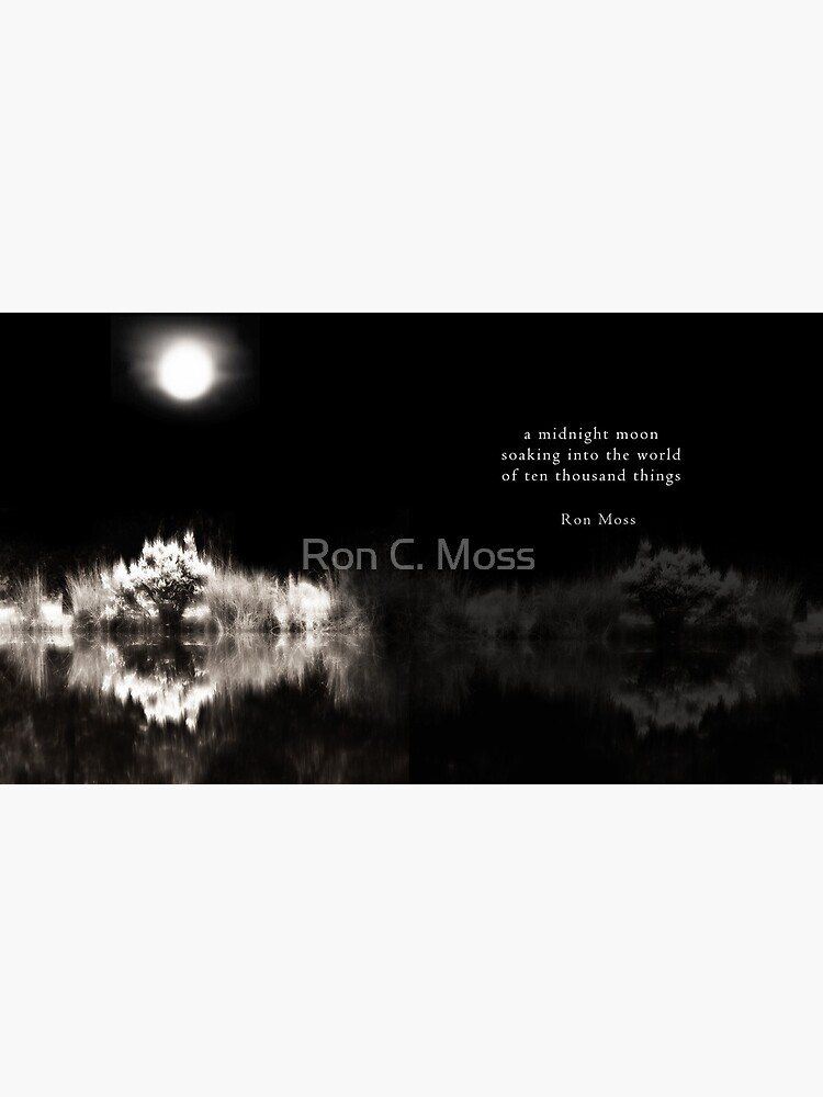 Into The World by ronmoss