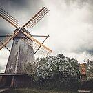 « The Windmill » par Philippe Sainte-Laudy