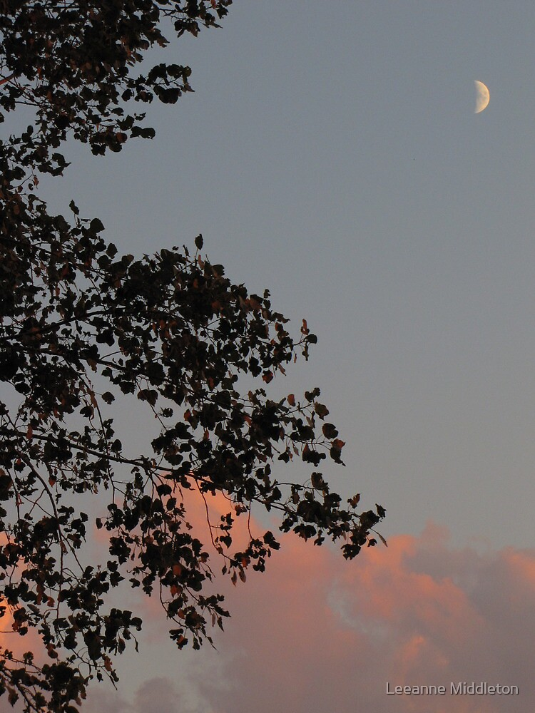 crescent moon silhouette by Leeanne Middleton