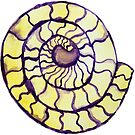 Intersex Pride Ammonite Crystal von Kendra Kantor