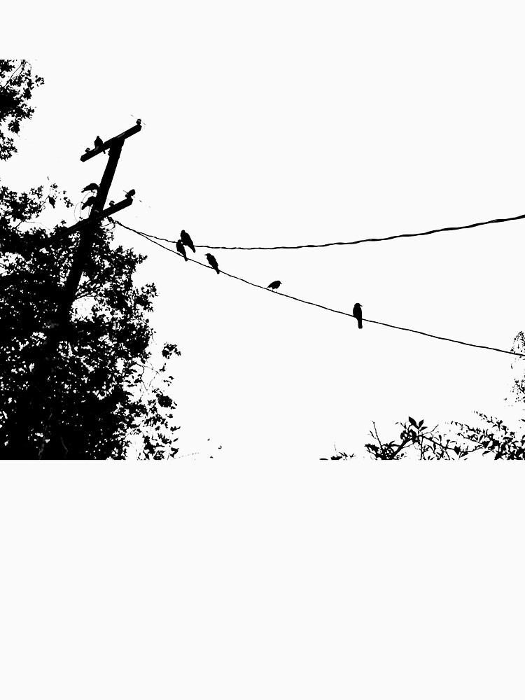 Crows on a wire by douglasewelch