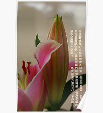 百合花 Poster