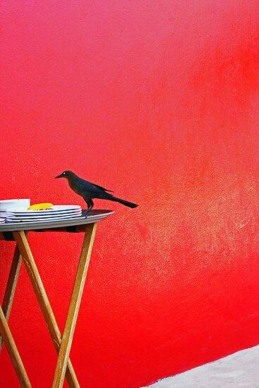 Black Bird by AvenueJ