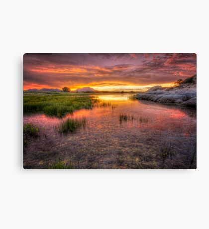 Colorful Muck Canvas Print