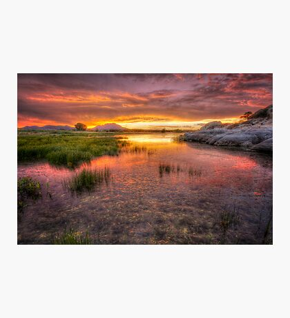 Colorful Muck Photographic Print