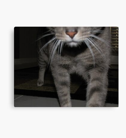 I'm Coming to Getcha..... Canvas Print