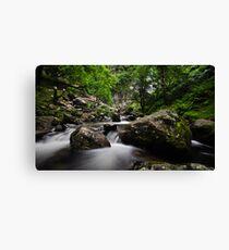 River at Aber falls  Canvas Print