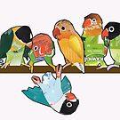 Seven lovebirds by Ruud van Koningsbrugge