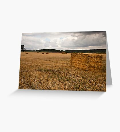 Harvested Greeting Card