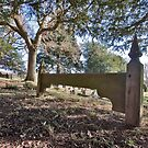 The Parish Churchyard, Chiddingly, West Sussex by dgbimages
