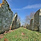 St.Mary's Churchyard, Wartling, East Sussex by dgbimages