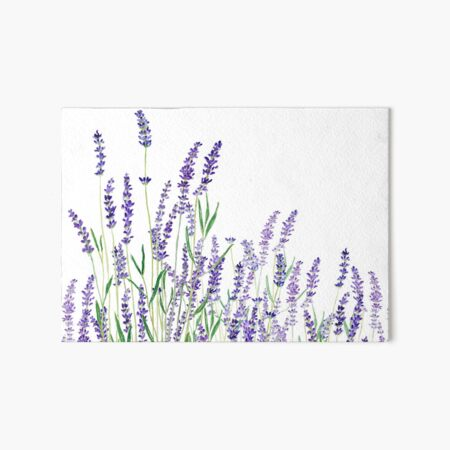 purple lavender horizontal watercolor Art Board Print