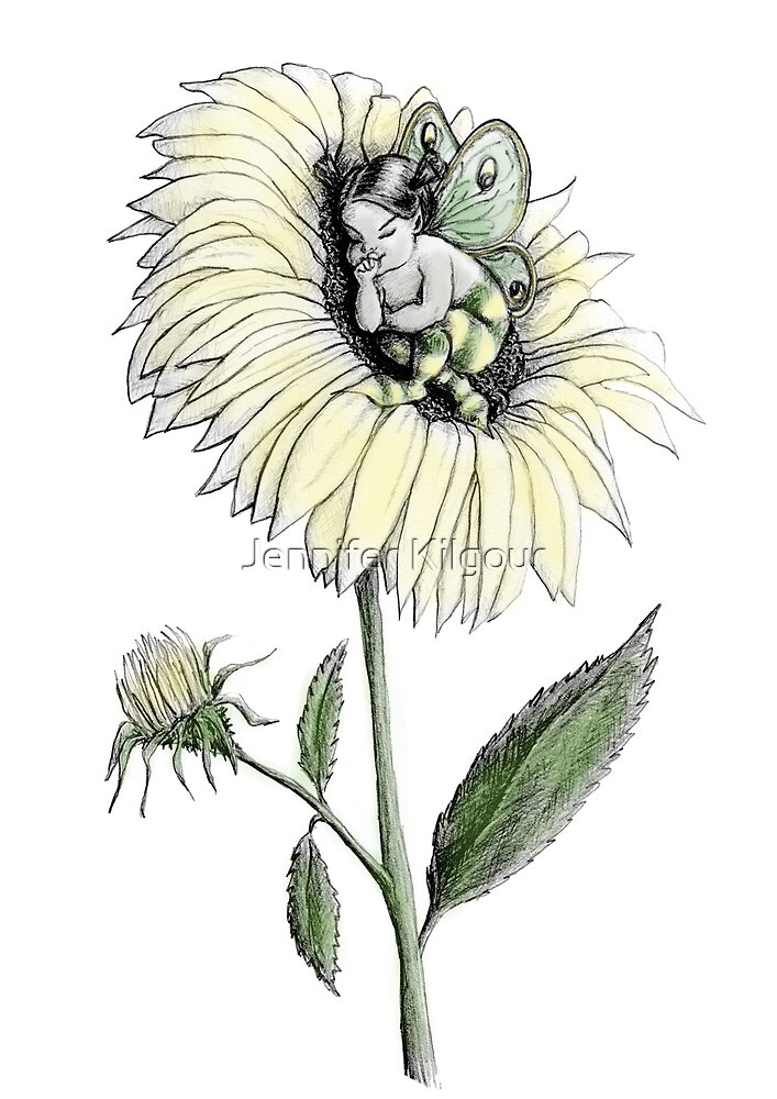 Sunflower Snooze by Jennifer Kilgour