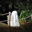 Water In The Night by Linda Miller Gesualdo