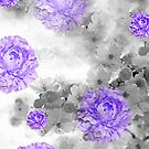 PURPLE ROSES AND WHITE CHERRY BLOSSOMS by Saundra Myles