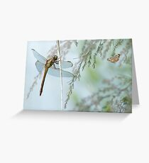 Summertime Friends Greeting Card