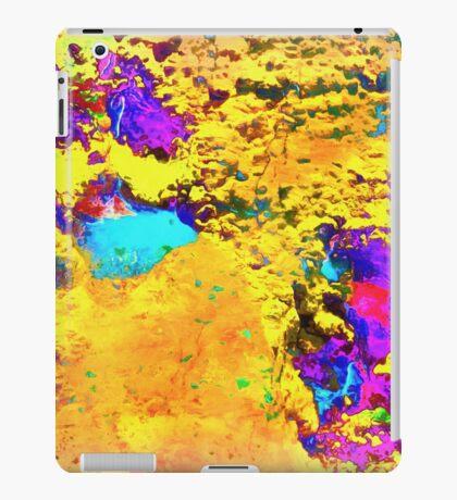 Paw Prints Desert Sands iPad Case/Skin