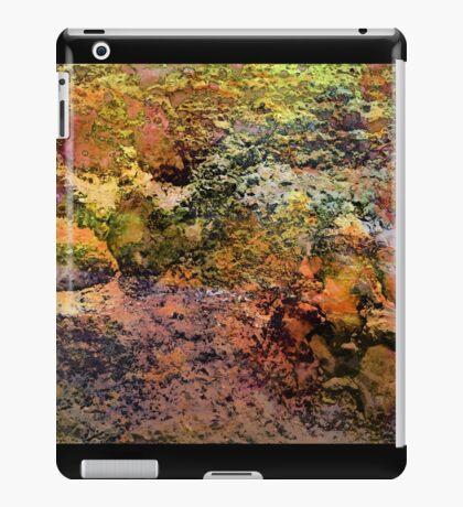 Paw Prints Swanky iPad Case/Skin