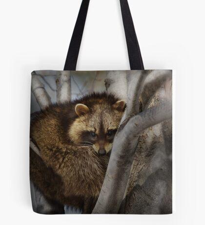 Raccoon in Tree Tote Bag