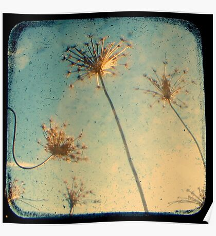 Reach for the Sky - TTV Poster