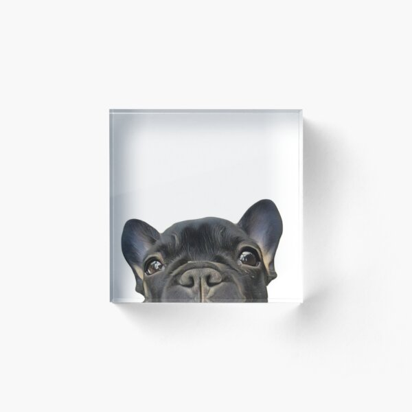 French Bulldog Acrylic Block