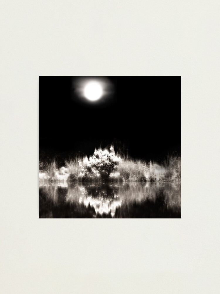 Alternate view of Into The World - Image Only Photographic Print