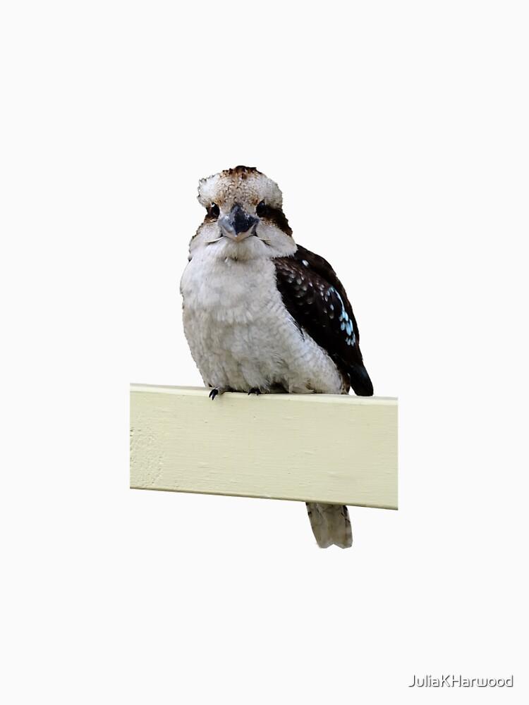 Kookaburra sitting on porch rail by JuliaKHarwood