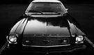 Mustang II by Joshua Greiner