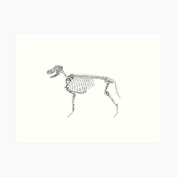 Typographic Dog Skeleton Art Print