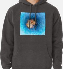 Dendrification 10 Pullover Hoodie