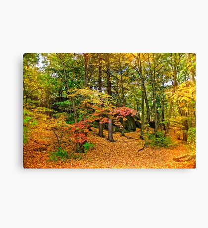 Wooded reservation Canvas Print