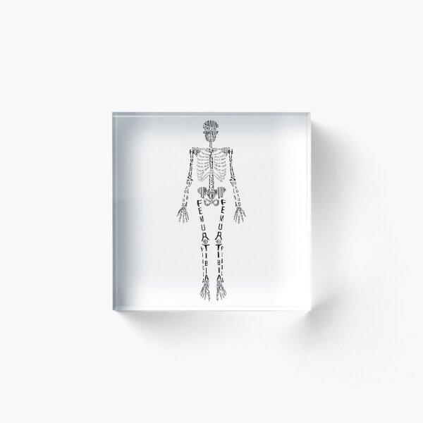 Typographical Skeleton Acrylic Block