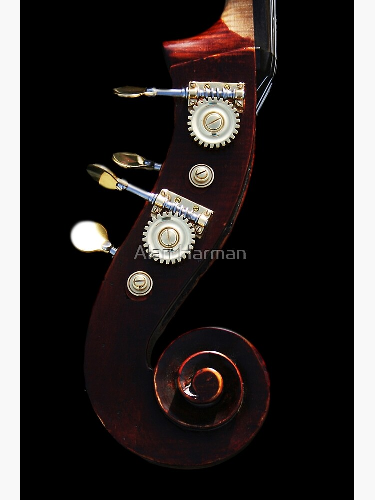 Bass 2 by AlanHarman
